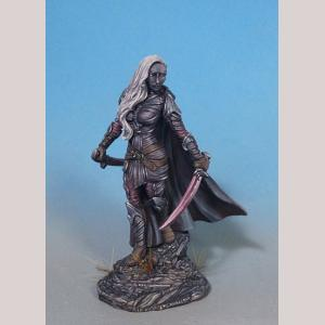 Female Dark Elf Warrior - Dual Wield