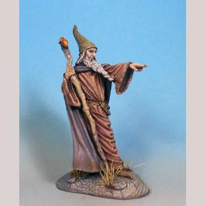 Sturm - Male Wizard with Staff